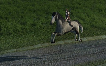 Лошадка покатает вас по материку