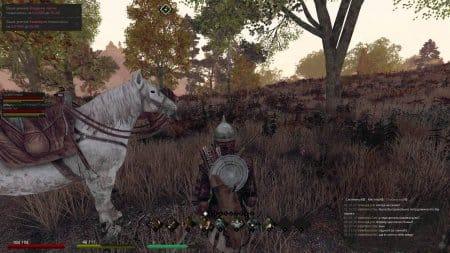 Конь мой боевой